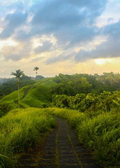 Campuhan Ridge in Ubud at sunset. Beautiful place for a relaxing walk when you want some space. One of my favourite things to do in Ubud :)