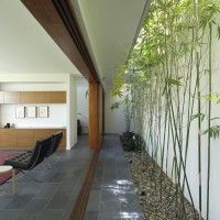 Internal Bamboo Garden running the length of the house   Fig Tree Pocket 2 House  Shane Plazibat Architect