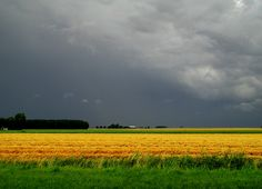 smaak - heidi kempe   fotografie dreigende luchten boven t graan