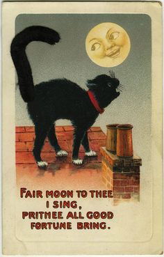 Fair moon to thee I sing... (1910s Cat Howling at The Moon Pipe Cleaner Tail Halloween Postcard.) #vintage #Edwardian #Halloween #postcards