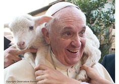 """Catequesis del Papa: """"Sigamos el camino trazado por la misericordia del Buen Pastor"""" - Radio Vaticano"""