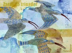 """Migration series - whimbrel by Lisa Hooper for the book: """"There and Back?"""""""