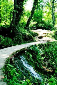 Thirsty. Jajce Forest Path, Southern Europe, Bosnia And Herzegovina, Paths, Waterfall, Country Roads, River, Outdoor, Travelling