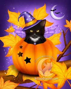 """Pumpkin Cat Magic - """"A serious little kitten sits in his pumpkin, which has somehow come to rest on an autumn tree branch. This handsome tuxedo cat, with his decorative pumpkin and brilliantly starry sky, will make the purrfect decoration each fall!"""" - by Melissa Dawn"""