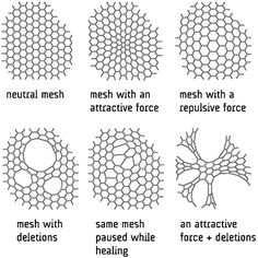 generative mesh forms