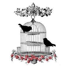 Vintage Bird Cage Digital Image Iron-On Transfer to Fabric (burlap, linen) Paper Prints (cards, tags) Bird Prints, Framed Prints, Antique Bird Cages, Cage Tattoos, Clock Tattoos, Motifs Animal, Images Vintage, Illustration, Original Gifts