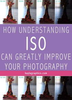 how understanding iso can greatly improve photography >> kaylagraphics.com