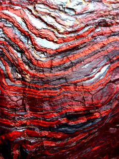 Sedimentary layers with bands of hematite, magnetite (gray/black), and jasper (red) in  banded iron formations of northern Michigan, USA.