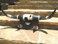 Mounted Horns Wall Hat Coat Rack Western Hooks Cowhide 1387 ec