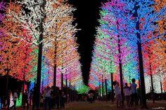 Christmas Lights, Selangor, Malaysia - Imgur