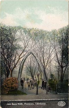 Postcard in P W & M Vello Series  -  Jaw Bone Walk, The Meadows early 1900