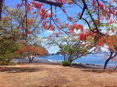 Ocotal beach, Guanacaste - COSTA RICA.