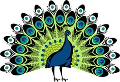Image result for simple colorful peacock drawing