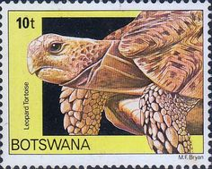 Postage Stamps Botswana 1980 Folktales Set Fine Mint Stamps For Sale Take a Look