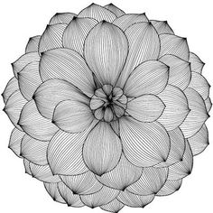My Wonderful Walls Serenity Blossom Dahlia Wall Sticker Size: Large - The Best Geometric Space Tattoos - Planet Tattos Ideas Zentangle Drawings, Mandala Drawing, Art Drawings Sketches, Easy Drawings, Zentangles, Flower Drawings, Zantangle Art, Pen Art, Stylo Art