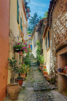 A narrow street in Provence village - Patrick Morand