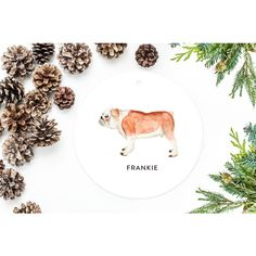 Bulldog Ornament Personalized Christmas Ornament Dog Gift English... ($18) ❤ liked on Polyvore featuring home, home decor, holiday decorations, grey, home & living, home décor, ornaments & accents, dog christmas tree ornaments, personalized dog christmas ornaments and gray wrapping paper
