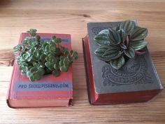 Rozkvetlé staré knihy :-) Old book in bloom :-) Old Books, Succulents, Bloom, Plants, Diy, Antique Books, Bricolage, Succulent Plants, Do It Yourself