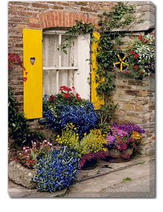 Polperro Outdoor Canvas Art Our Polperro Outdoor Canvas Art features a bright and cheery window with wooden shutters and a colorful garden of blooming flowers. Create your own oasis with our stunning, Beautiful Gardens, Beautiful Flowers, Garden Windows, Window Boxes, Flower Boxes, Dream Garden, Windows And Doors, Belle Photo, Garden Inspiration