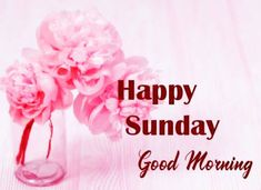 Good Morning Sunday Pictures Good Morning Sunday Pictures, Happy Sunday Hd Images, Good Morning Flowers Quotes, Good Morning Happy Sunday, Sunday Photos, Latest Good Morning, Good Morning Picture, Honey Shop, Flower Quotes