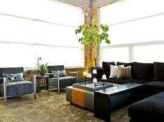 10 Top Plants to Grow Indoors: Umbrella plant (Schefflera actinophylla) #Houzz #indoorplants #TheHurstTeam
