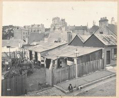 Stables at rear of No 42 Francis St,Glebe in inner Sydney in 1900.    🌹