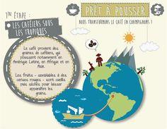 #prêtàpousser #champignons #café #étape 1