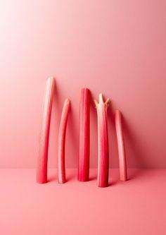 rhubarb /
