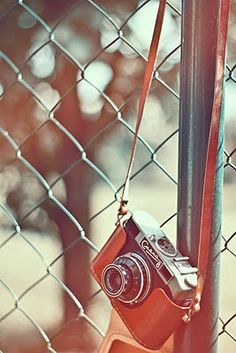 inspiration - love the filter/color and the vintage camera.