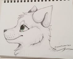 Quick wolf sketch using only pen and marker (@JamesPotter1565)
