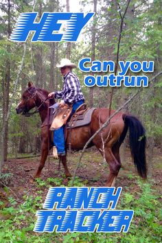 Wonder how you would do on the reality TV show Man Tracker? In Canada you can sign on for a real life taste of the hide and seek adventure with Ranch Tracker in Red Deer, Alberta.