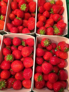 [Found] Some of the most beautiful strawberries I have ever seen #food #foodporn #recipe #cooking #recipes #foodie #healthy #cook #health #yummy #delicious