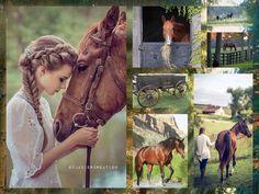 My love for horse  javiercreation