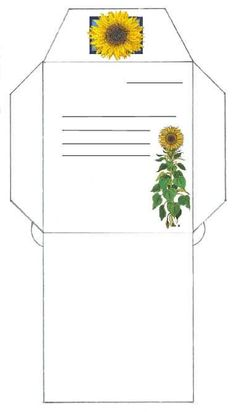 seed packet (Sunflower and many more) large and 3 to a page