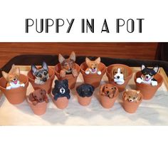 Get a Puppy in a Pot that looks like YOUR puppy!  Painted from your pictures!    Breeds shown are available at this time.  More breeds are being added!  A personal favorite from my Etsy shop https://www.etsy.com/listing/234634657/puppy-in-a-pot