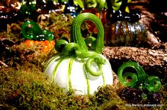 Fall Harvest and Design In the Garden…with Mariani Landscape. #Glass #Pumpkin #MyMariani