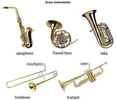 Instrumentos de aire ( bronce )