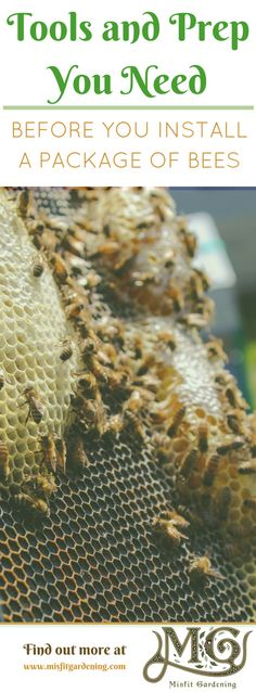 Installing a package of bees can be daunting! Click to find out what you need before they arrive or pin it and save for later Biodynamic Gardening, Organic Gardening, Backyard Beekeeping, Chickens Backyard, Modern Homesteading, Mini Farm, Grow Your Own Food, Urban Farming, Bee Keeping