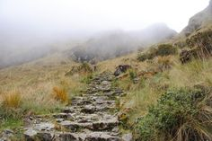 Photo of the Day - #Raw #Inca #Steps to #Machu #Picchu - Near #Cuzco, #Peru - One of the reasons Machu Picchu is so popular is because of the incredible way in which you can complete your journey to get there from where you are sitting right now. There is a famous ancient trail that hundreds of years ago was used by the Emperor of the Incas to journey to Machu Picchu. Photo from #absolutevisit at www.absolutevisit.com - all images Creative Commons Noncommercial