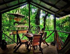 Outdoor-Dining-Room-with-Forest-View-Theme Desain Rumah Pohon Sederhana Di Hutan Kosta Rika