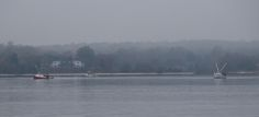 Oyster boats on the Patuxent