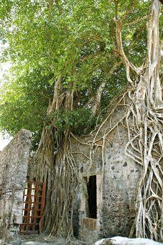 Home of Hernan Cortes - Casa de Hernan Cortes, Antigua, Veracruz, Mexico