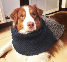 My first knit scarf..and my super boy as a model