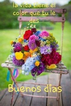 Good Morning Flowers Pictures, Good Morning Friends Images, Good Morning Beautiful Pictures, Good Morning Happy Sunday, Good Morning Roses, Good Morning Beautiful Quotes, Good Morning Gif, Good Morning Greetings, Good Morning Animation