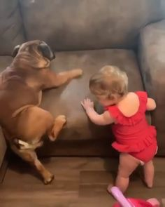 up up puppy dogs dog pets Viky P.Up up up puppy dogs dog pets Viky P. Cute Funny Dogs, Cute Funny Animals, Funny Babies, Cute Baby Animals, Animals And Pets, Cute Cats, Cute Animal Memes, Cute Animal Videos, Dogs And Kids