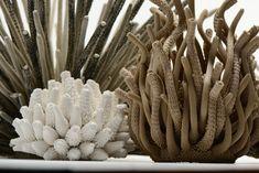 Objets | Tzuri Gueta Arte Coral, Coral Reef Art, Soft Sculpture, Abstract Sculpture, Kintsugi, Atelier D Art, Sculpture Projects, Sea Theme, Natural Forms
