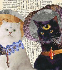 CAT WIZARDS (by Amelia)