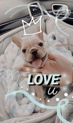 on Insta Ideas De Instagram Story, Friends Instagram, Fotos Do Instagram, Creative Instagram Stories, Instagram And Snapchat, Instagram Bio, Dog Stories, Cute Stories, Ig Story