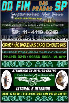Dedetização SP-11-4119-0219-Orç. p/ Telefone