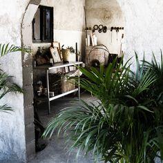 Patricia Larsen: Living in Mexico N° 04